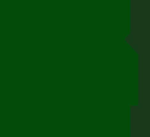 data entry - SEO